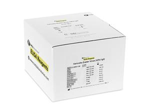 Varicella Zoster virus IgG | ELISA | kits | Laboratory Reagents | diagnostic | price | cost | disease detection | infectious diseases