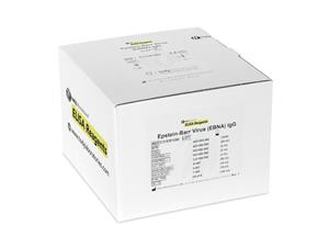 Epstein Barr Virus | EBV-EBNA IgG | ELISA | kits | Laboratory Reagents | diagnostic | price | cost | disease detection | infectious diseases